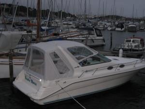 SeaRay 290